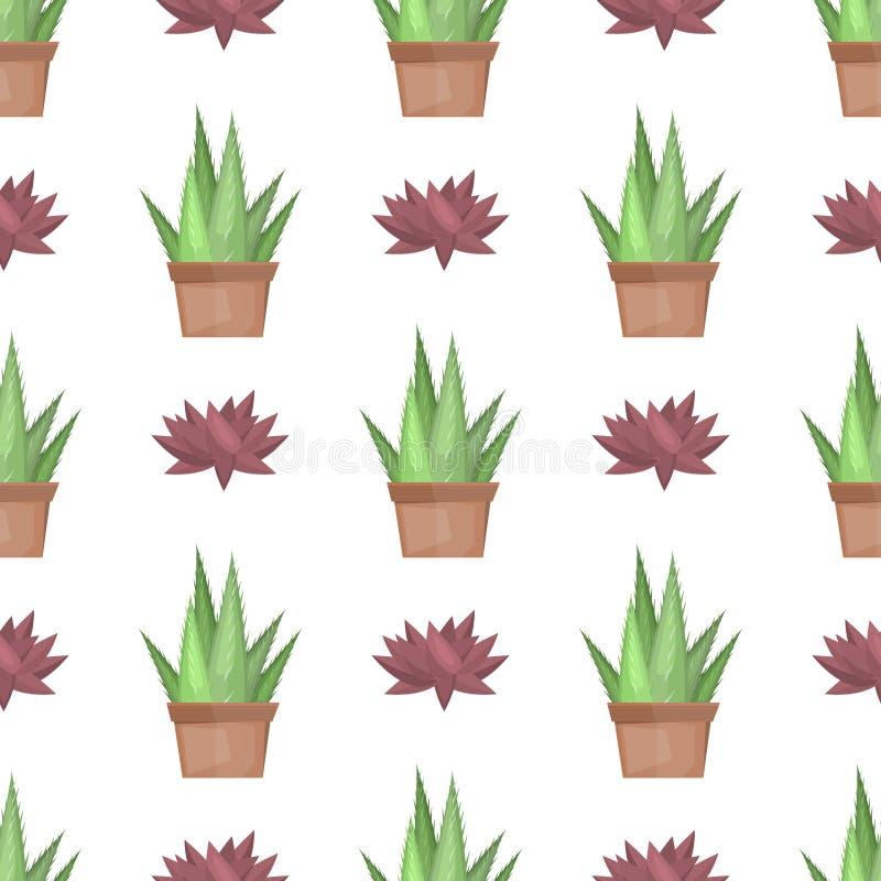 KaktusWüstenpflanzenvektor stock abbildung