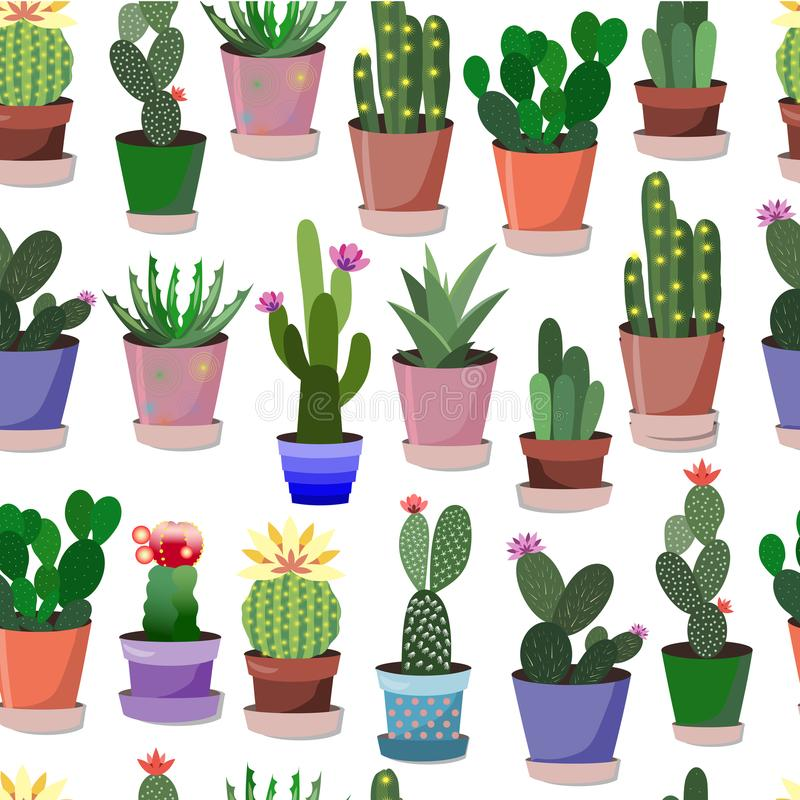 27_kaktusy_pattern stockfotos