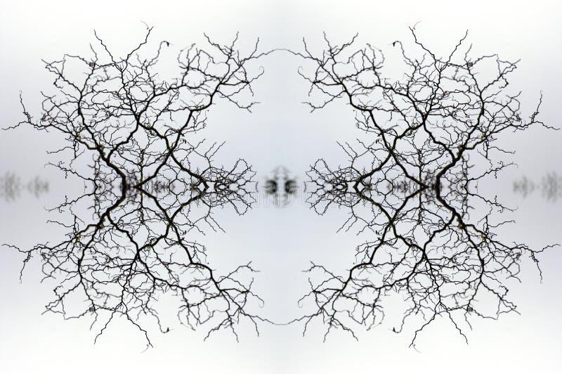 Kaléidoscope 2 photos libres de droits