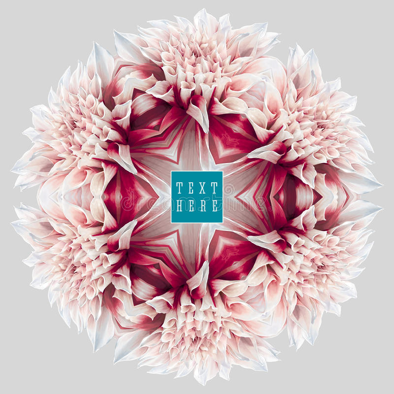 Kaléidoscope 6 de dahlia illustration de vecteur