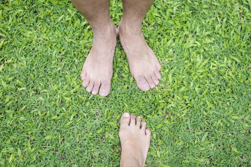 Kal fot av den asiatiska kvinnan och mannen som står över grönt gräs för att koppla av royaltyfria foton