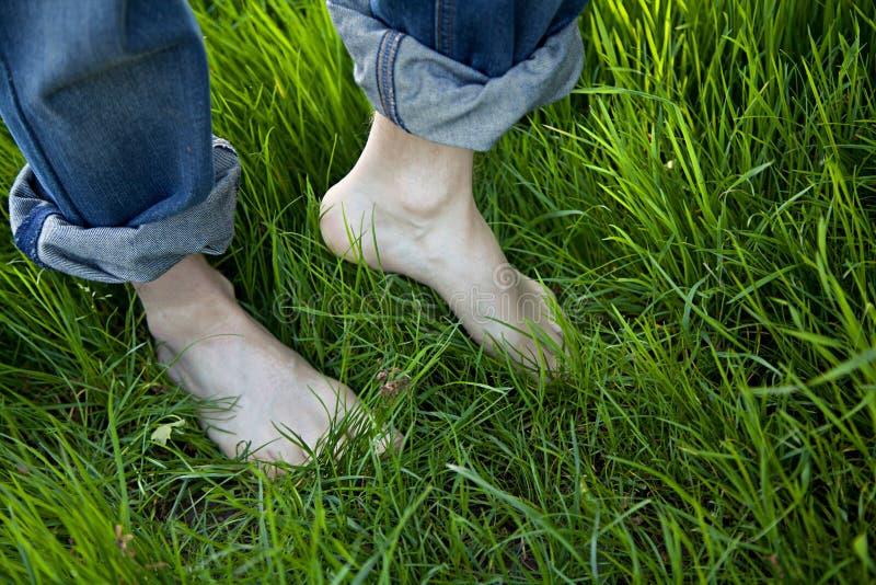 Kal fot på grönt gräs fotografering för bildbyråer