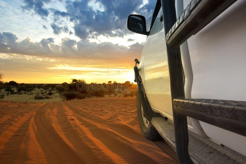 Kalahari徒步旅行队 免版税库存照片