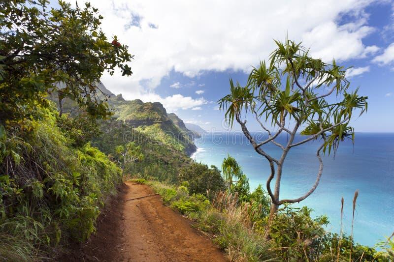 Kalalau足迹,考艾岛,夏威夷 免版税库存图片