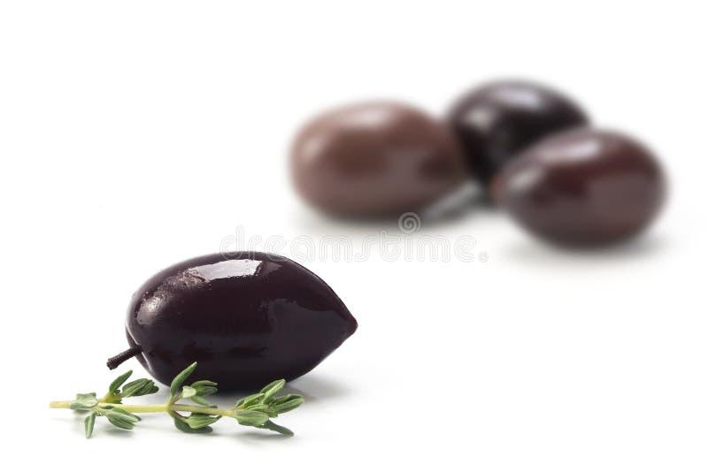 Kalamata, de kruidige zwarte die olijf van Griekenland, op wit wordt geïsoleerd stock foto's