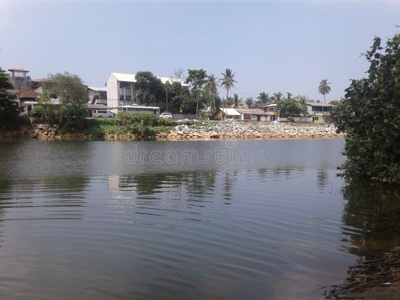 Kalani flod - Sri Lanka royaltyfri foto