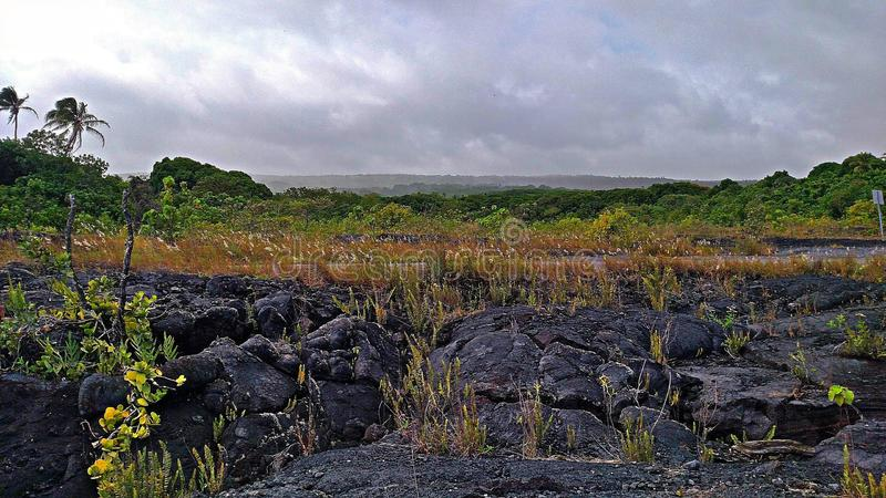 Kalapana Lava Flow Land royalty free stock photo