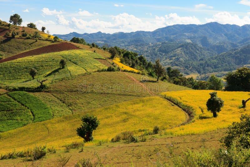 Kalaw高地的五颜六色的rolllings小山的激动人心的景色如被看见,当迁徙从Kalaw到Inle时 免版税图库摄影