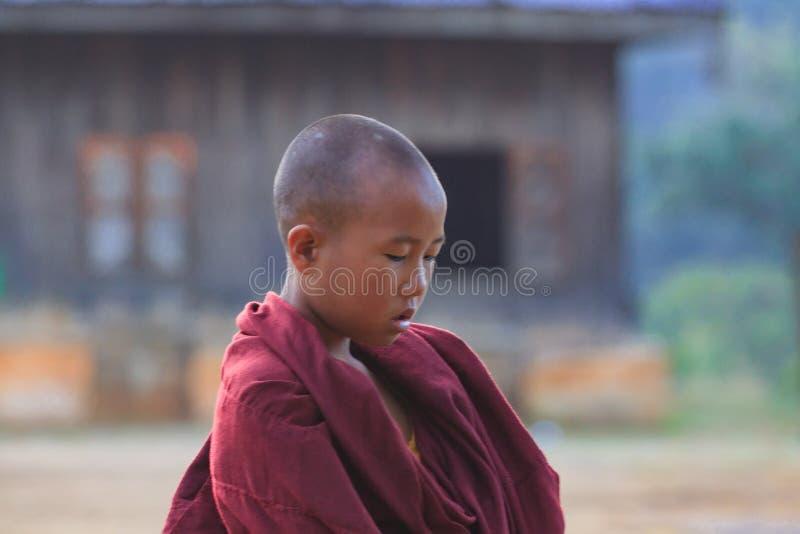 Kalawhooglanden, Myanmar, 20 November 2018 - Dawn bij boeddhistische monastry van kinderen Kinderen op de leeftijd van zes royalty-vrije stock foto