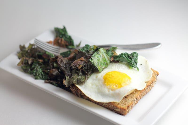 Kale και φρυγανιά αυγών στοκ φωτογραφία με δικαίωμα ελεύθερης χρήσης