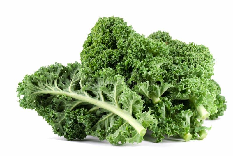 Download Kale stock photo. Image of food, vegetarian, ingredient - 7510418