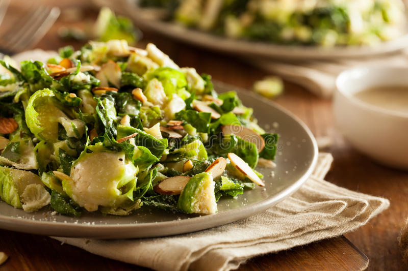 Kale and Brussel Sprout Salad royalty free stock photography