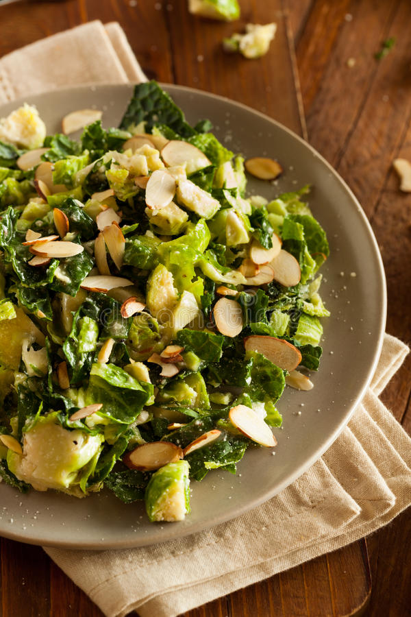 Kale and Brussel Sprout Salad stock image