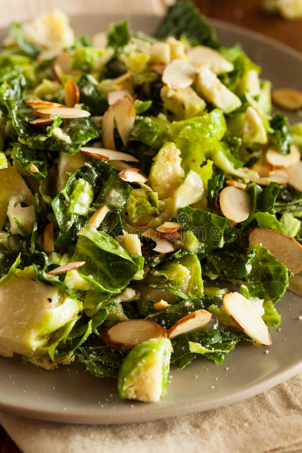 Kale and Brussel Sprout Salad stock photos