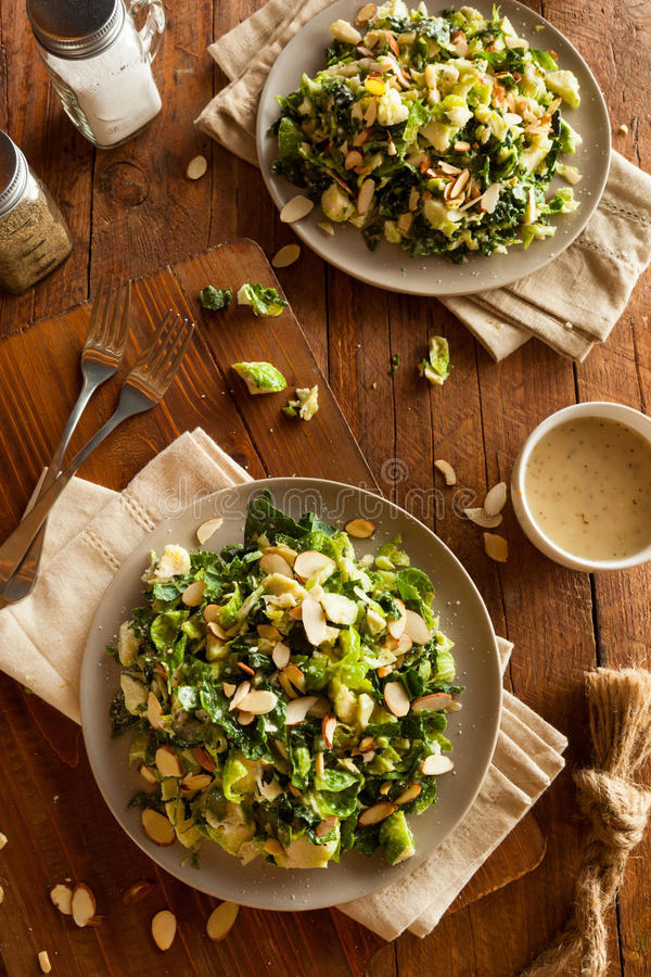 Kale and Brussel Sprout Salad stock photography