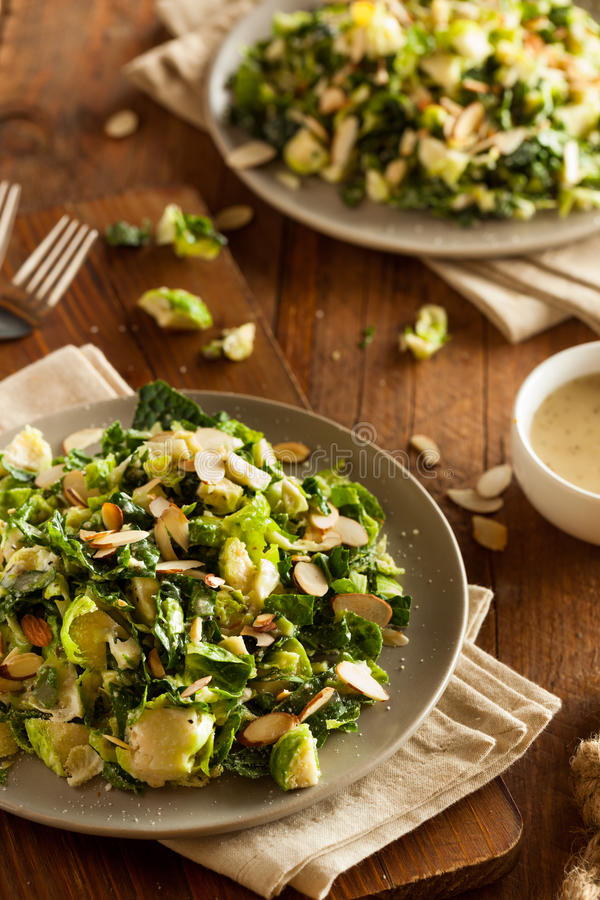 Kale and Brussel Sprout Salad stock images