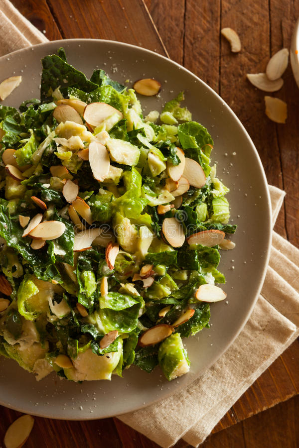 Kale and Brussel Sprout Salad. With Almons and Lemon Dressing royalty free stock photo