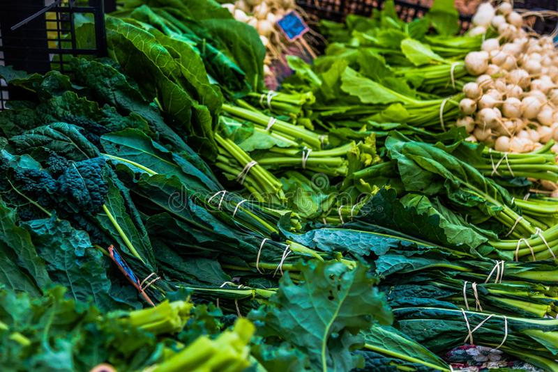 Farmers market bin of green vegetables. Kale, green onions and leafy vegetables laid out on the farmers market table stock photo