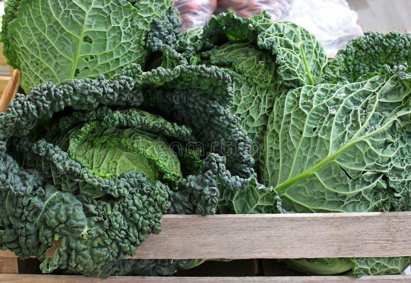 Kale kapusta na rynku zdjęcia royalty free