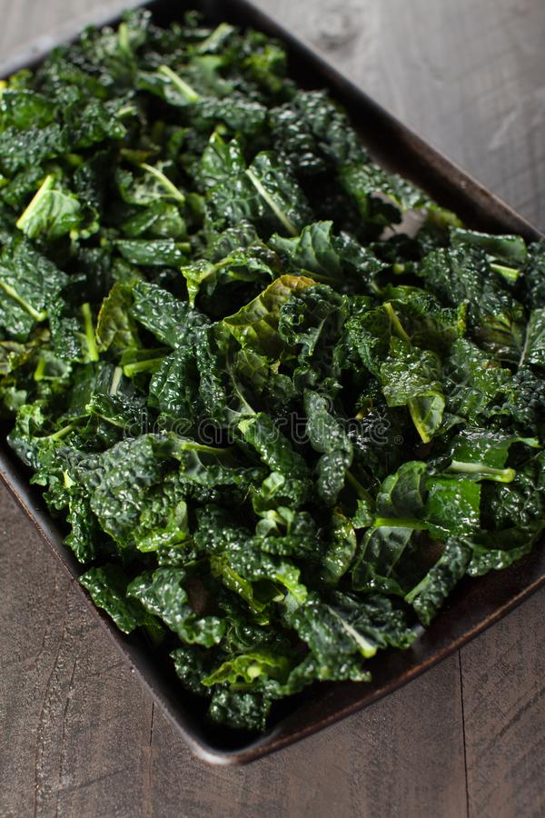 Kale pieces prepared for oven angled shot. Green kale pieces on stone prepared with olive oil for the oven angled shot royalty free stock images