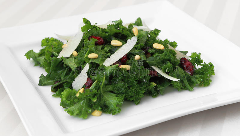 Kale Salad. Served on a square plate royalty free stock photo