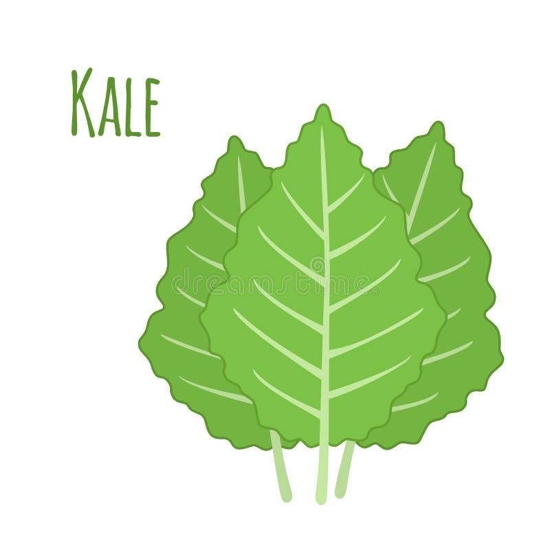 Kale warzywo w kreskówki mieszkania stylu Organicznie zdrowy liść royalty ilustracja