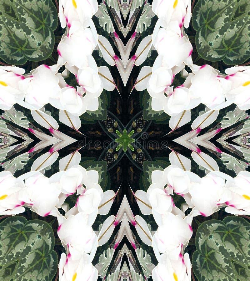 kaleidescope abstrakcyjne projektu ilustracja wektor