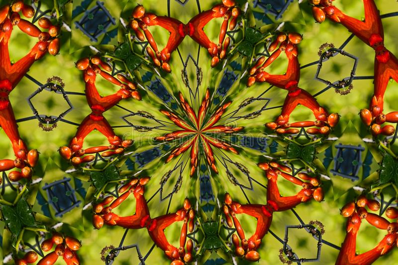 kaleidoscope vektor illustrationer
