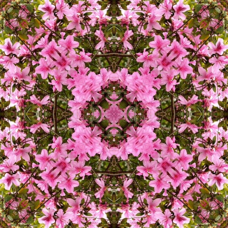 Free Kaleidoscope Background Royalty Free Stock Image - 1170216