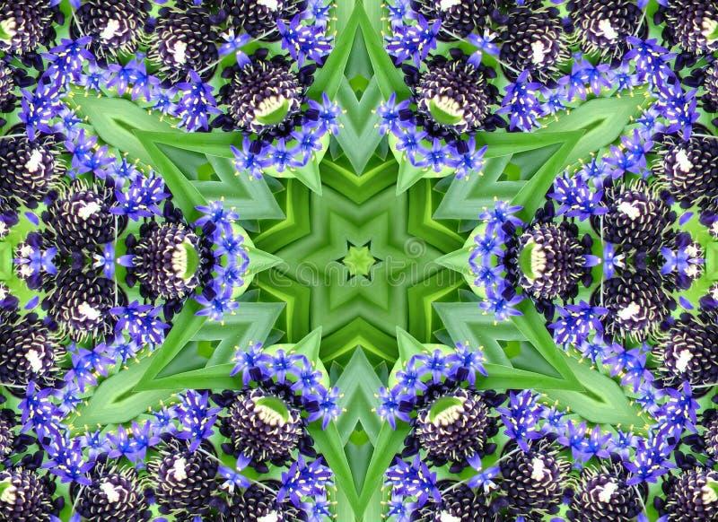 Kaleidoscope Design 36 Free Public Domain Cc0 Image