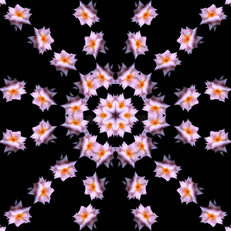 Kaleidoscope Editar com Flores Rosa ilustração royalty free