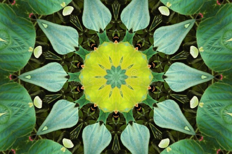 Kaleidoscope effect royalty free stock photography