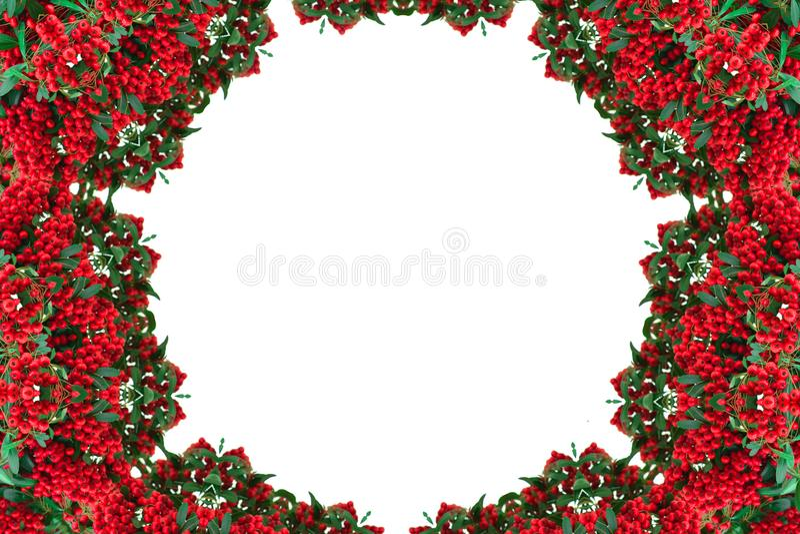 Kaleidoscope of red berries. Pattern, mandala. Frame stock image