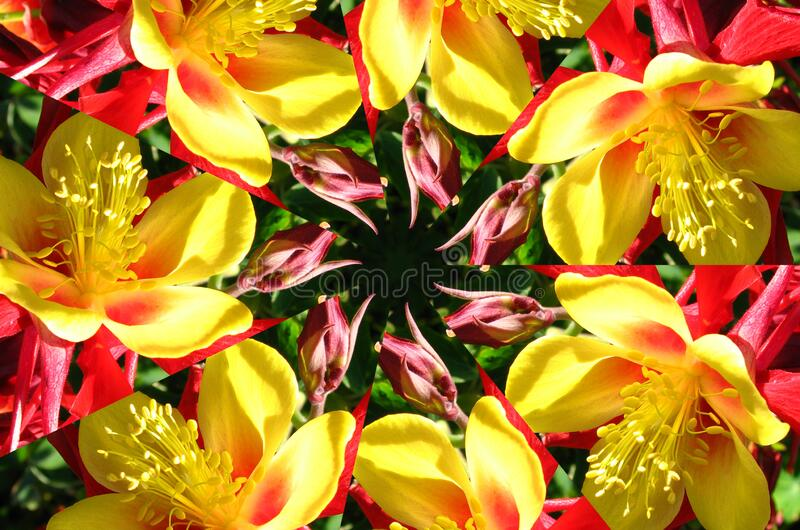 kaleidoscope (64) royalty free stock photo