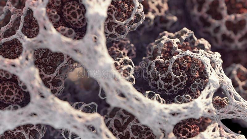 Kaleidoscopic фракталь IFS стоковые фотографии rf
