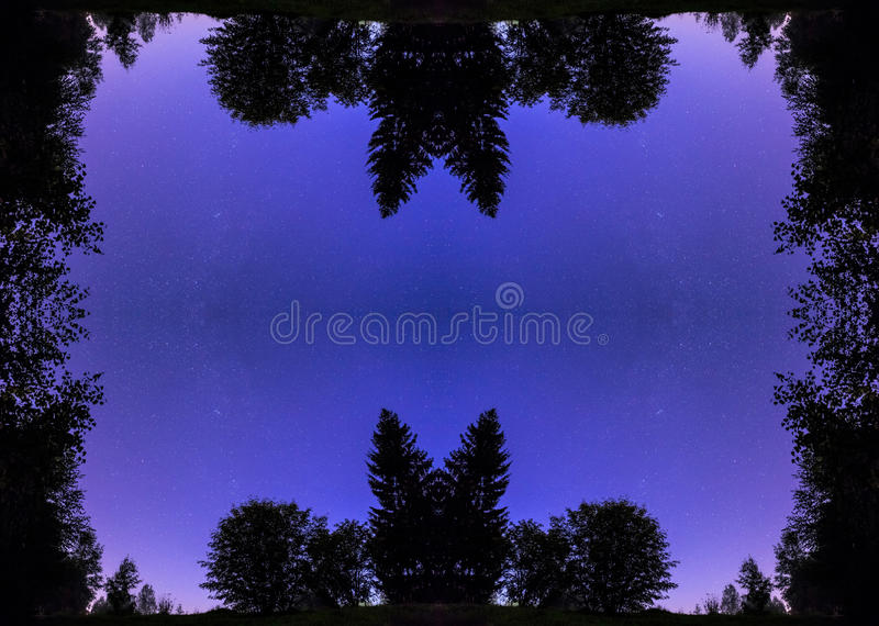 Kaleidoscopic pattern from night plants contours and starring dark sky royalty free stock image