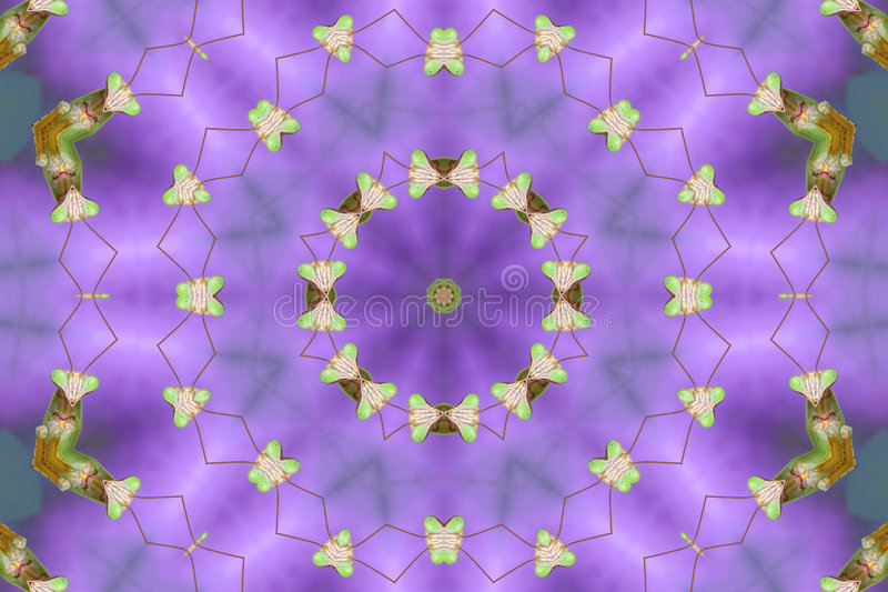 Kaleidoscopic Praying Mantis royalty free stock photos