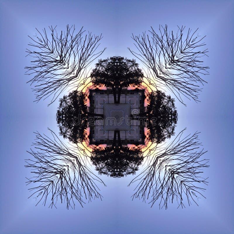 Kaleidoskopische Baum-Schattenbilder gegen Sonnenuntergang-Himmel stockfotos