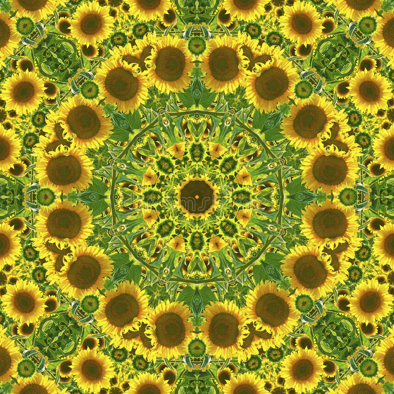 Kalejdoskop med naturliga bevekelsegrunder av solrosor stock illustrationer