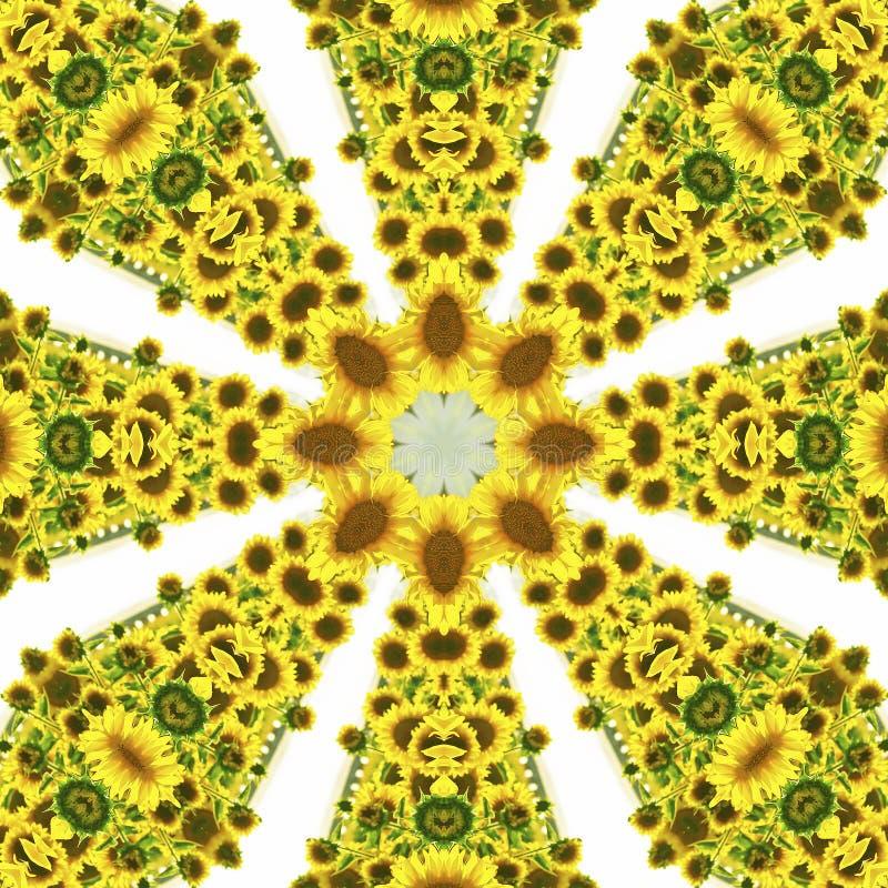 Kalejdoskop med naturliga bevekelsegrunder av solrosor vektor illustrationer