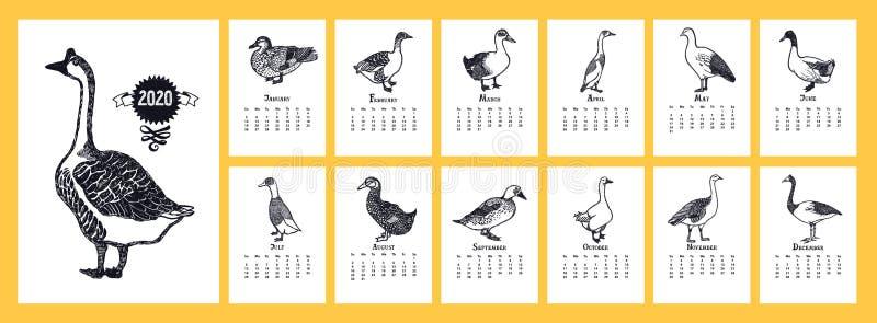 Kalender 2020 Eenden en ganzen royalty-vrije illustratie