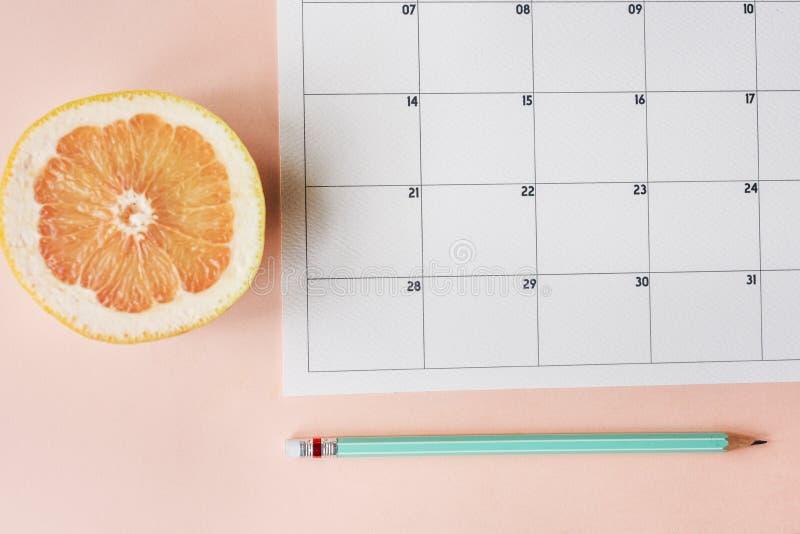 Kalender-Verabredungs-Tagesordnungs-Zeitplan-Planer lizenzfreie stockfotos