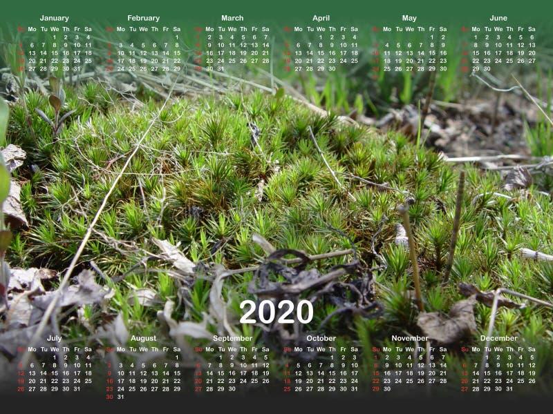 Kalender voor 2020 stock illustratie