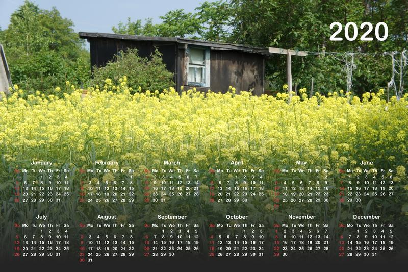 Kalender voor 2020 royalty-vrije illustratie