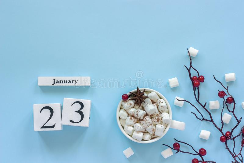 KalenderJanuari 23 kopp av kakao, marshmallower och filialbär royaltyfri bild