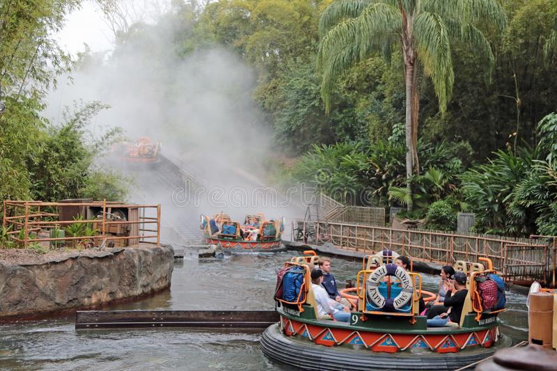 Kali River Rapids, Walt Disney World royalty-vrije stock fotografie