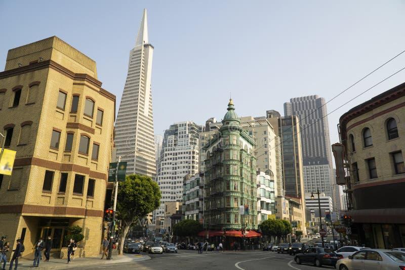 Kalifornia San Fransisco, północy plaża fotografia royalty free
