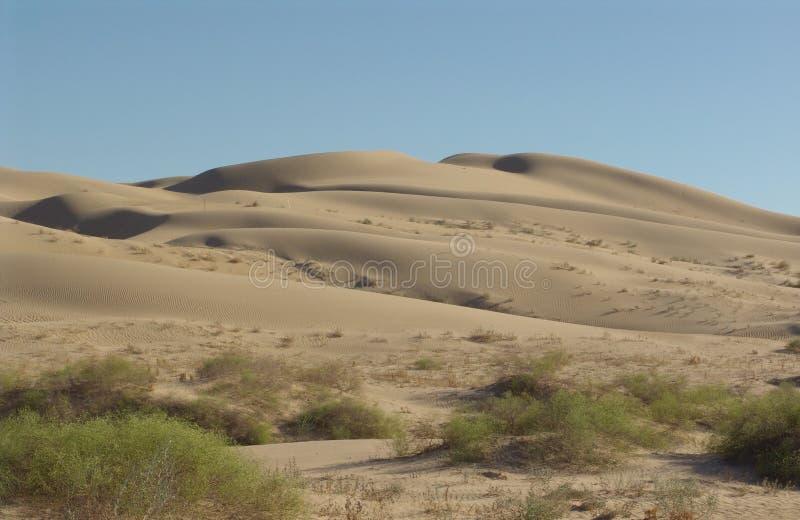Download Kalifornien ökensand arkivfoto. Bild av kalifornien, buskar - 283654