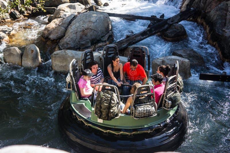 Kalifornien-Abenteuer-Graubär-Fluss-Lauf stockfoto