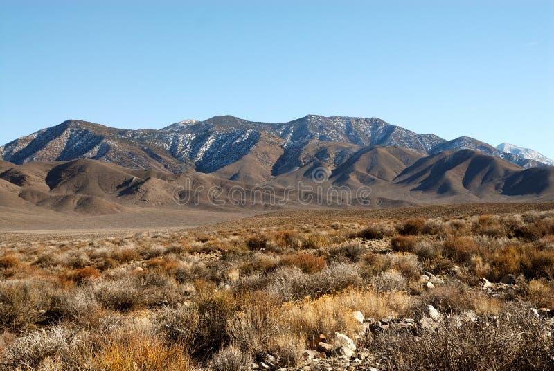 Kalifornien Death Valley royaltyfria bilder